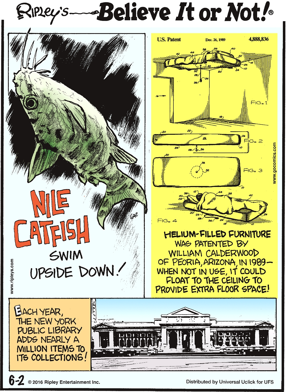 Nile catfish swim upside down! -------------------- Helium-filled furniture was patented by William Calderwood of Peoria, Arizona, in 1989—when not in use, it could float to the ceiling to provide extra floor space! -------------------- Each year, the New York Public Library adds nearly a million items to its collection!