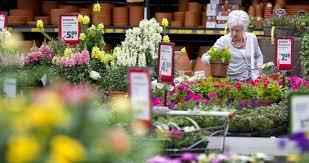 Grootste omzetstijging tuinbranche in tien jaar tijd
