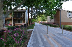 Housing along Pioneer Pathway (2014)