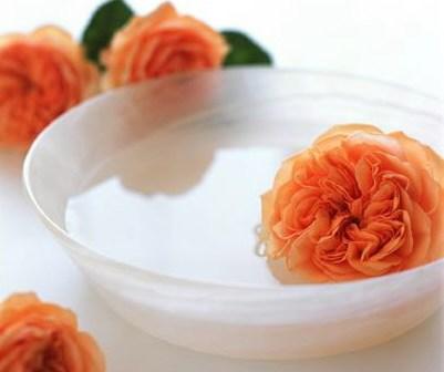 ماء الورد rosewater-saida
