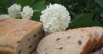 خبز بالزبيب