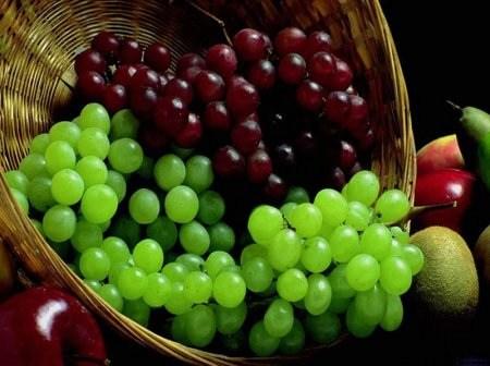 دراسة امريكية عن العنب