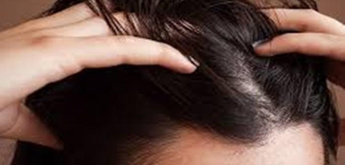 الشعر الدهني و كيفية المحافظة عليه