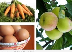 5 عناصر غذائية يفضل تواجدها في كل منزل