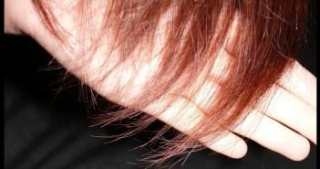 الشعر الجاف:  قناع  زيت الأفوكادو