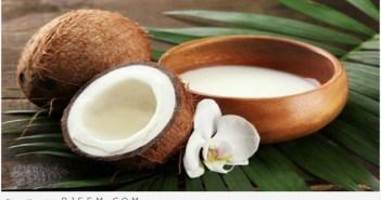 فوائد حليب جوز الهند - وصفات جمالية بحليب جوز الهند