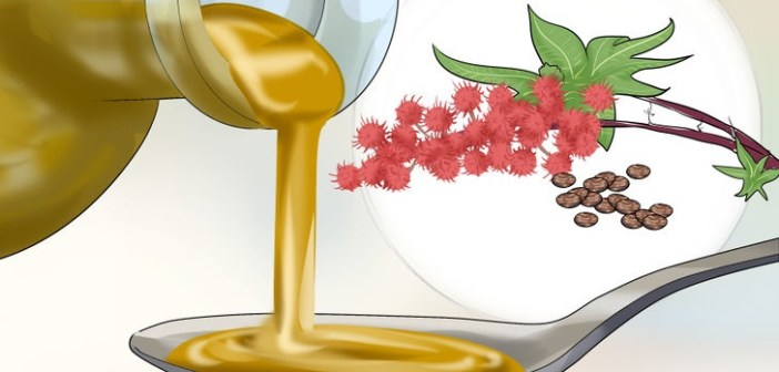 34 فائدة صحية وجمالية لزيت الخروع