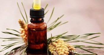 9 فوائد صحية لزيت الصنوبر