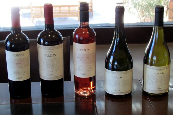 Garzón wines