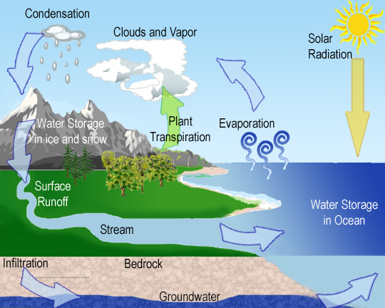 Water Cycle Rmbel