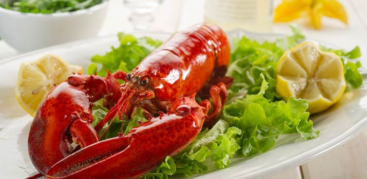 RMC Food Services Rochester Meat Company - lobster customer service