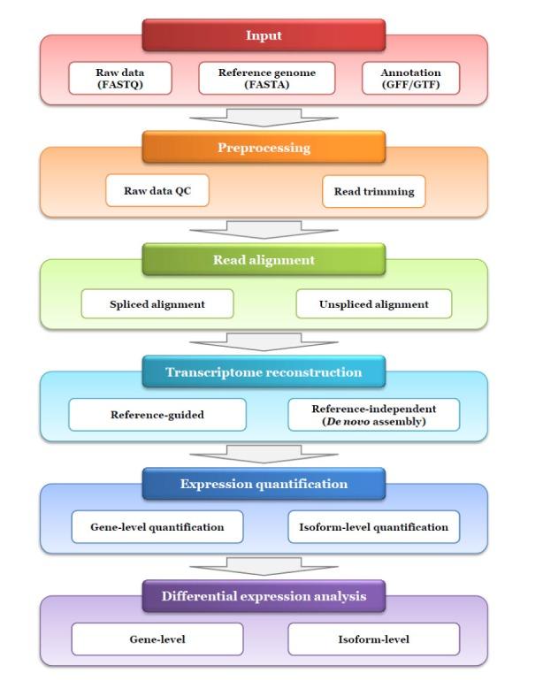 Review of RNA-Seq Data Analysis Tools RNA-Seq Blog
