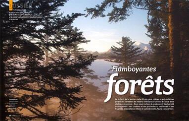 La Forêt de la Massane dans le dernier Pyrénées magazine !