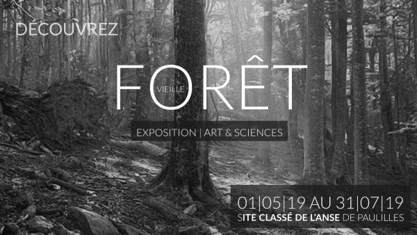 [EXPOSITION] Vieille Forêt - 1er Mai au 31 Juillet - Anse de Paulilles