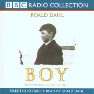 roald dahl boy tales of childhood essay