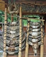 Bena village sacrifice, Flores, Indonesia