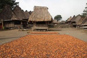 Bena traditional Ngada village near Bajawa