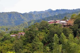Moni village in the Flores central highlands