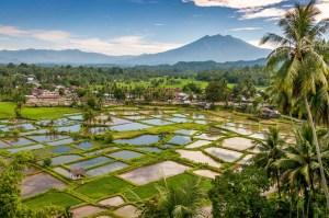 Beautiful Sumatra