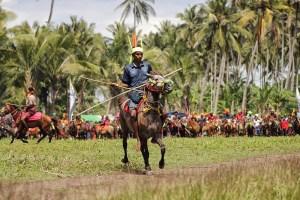 Pasola festival, Sumba, Indonesia
