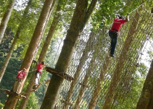Climbing adventures at Bali Tree Top Adventures