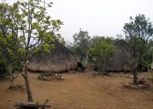 Fatumnasi traditional huts, West Timor
