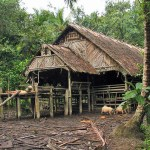 indonesia-sumatra-mentawai-uma-house