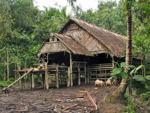 Mentawai traditional village house
