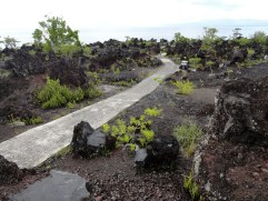 Batu Angus lava flow, Ternate Island