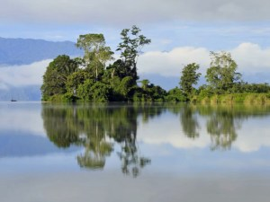 Tranquil Lake Lindu, Lore Lindu National Park, Central Sulawesi