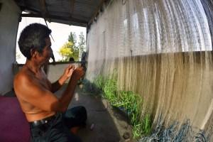 Fishing net repairs, Sumba, Indonesia