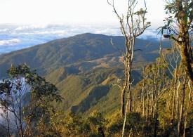 View from Gunung Mutis summit, West Timor
