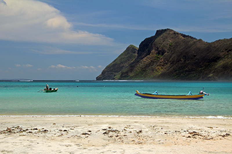 Beautiful Maluk in West Sumbawa