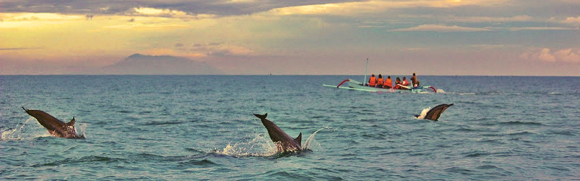 Lovina dolphin tours, Bali