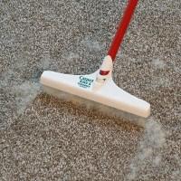 Carpet Rake - Carpet Vidalondon