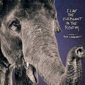 I Like The Elephant In The Room by Rob Lambert