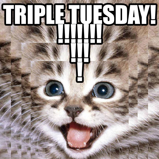 triple tuesday cat