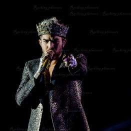 Queen, Adam Lambert srf 16-3738