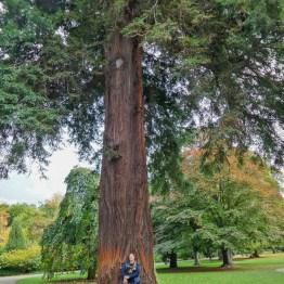 Botanic garden, Christchurch. Photo: Ulf Fornander