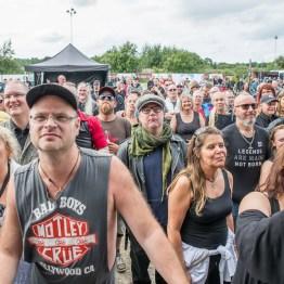 festivallife rockit 17-609306