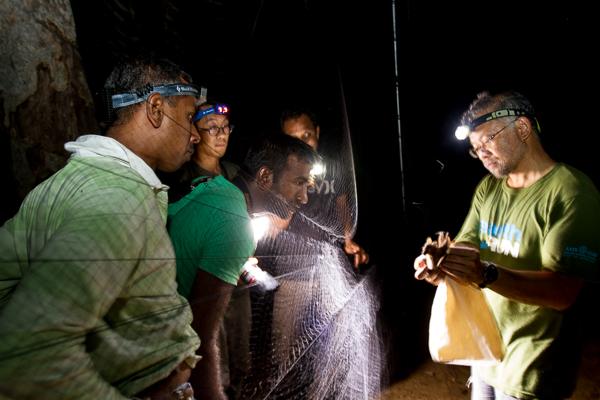 Dr. Burton Lim showing locals a bat caught in a mist net and teaching them about that species' behaviour. Credit: Deirdre Leowinata