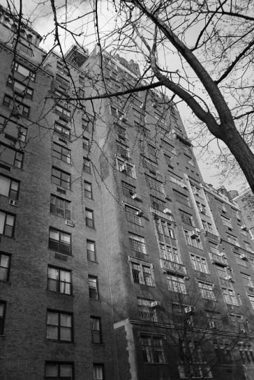 NYC240