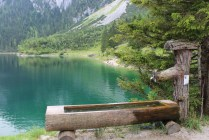 gosausee_2015_54