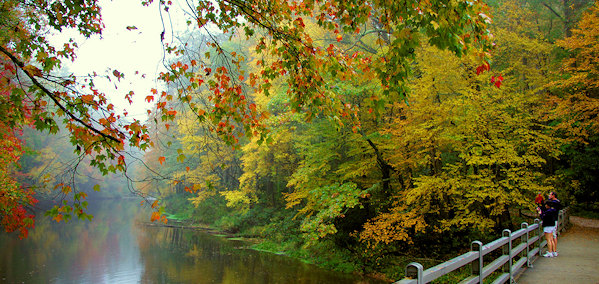 Fresh New Fall Hd Wallpapers Top 15 Rainy Day Activities In Asheville
