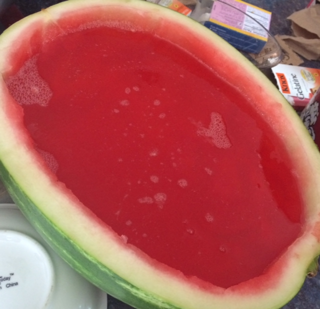 """Real"" Watermelon Shots"