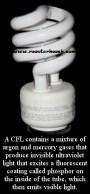 CFL(RH)