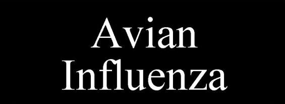 Avian Influenza 2014