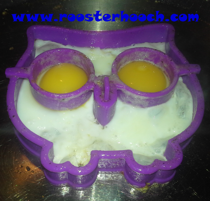 EggOwl2(Web)(RH)