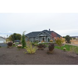 Impressive Contact Us Landscape Design Roots Nursery Landscape Rural Roots Landscape Design Australian Rural Landscape Design