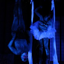 Shibari Circus